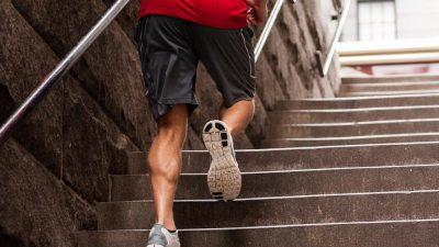 Trepte 2 Trail Running Academy 1