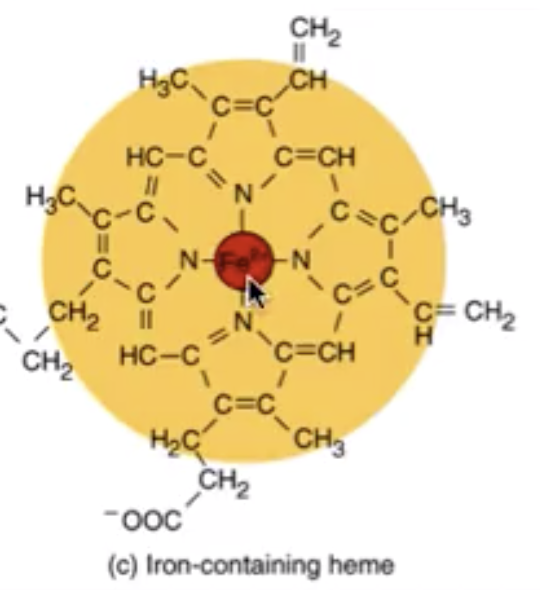 Molecula de fier